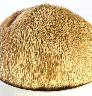 唐官人 东北猴头菇 100g