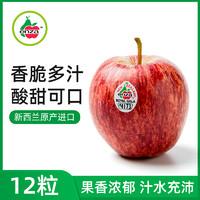 新西兰进口royal gala加力果12粒 水果新鲜整箱进口嘎啦小苹果
