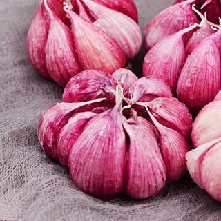 联承 紫皮蒜头 2.5kg