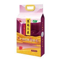 十月稻田 寒地之最 香稻王大米 5kg *2件