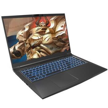 MECHREVO 机械革命 蛟龙P 锐龙版 17.3英寸 笔记本电脑 (黑色、锐龙R7-4800H、16GB、512GB SSD、RTX2060)
