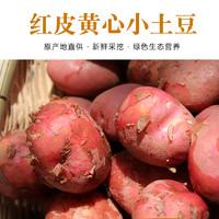 靖鲜生  云南土豆  10斤/箱