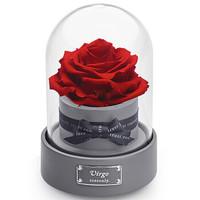 诺誓 (roseonly) 星座玫瑰花音乐盒 永生花礼盒 保鲜花盒 情人节礼物 生日礼品 送女友 双子座 嫣红