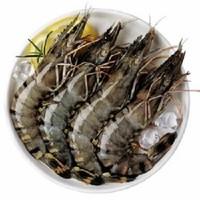 鲜有汇聚 活冻黑虎虾 400g