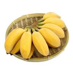 黔食荟 北纬22°蜜 小米蕉香蕉 9斤装