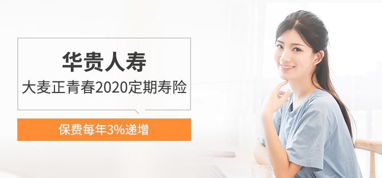华贵 大麦正青春2020定期寿险