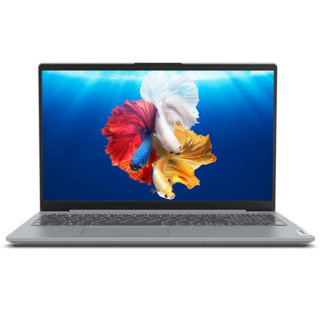 Lenovo 联想 小新系列 小新15 2020款 笔记本电脑 (银色、锐龙R5-4600U、16GB、512GB SSD、核显)