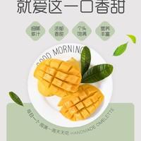鑫果娃果业   新鲜热带芒果 需催熟  9斤/箱