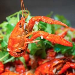 9种口味小龙虾畅吃,啤酒畅饮!上海大华虹桥假日酒店小龙虾自助晚餐