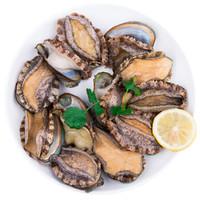 渔传播 青岛鲜活鲍鱼 500g 8头 1份 海鲜水产 火锅食材 *3件