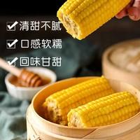 李豫龙 东北绥化黄糯玉米 200g*10根