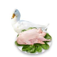 芮瑞 农家散养土鸭子肉 净重约950g