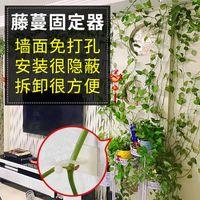 绿萝爬墙绿植固定器定型藤蔓墙上攀爬固定自粘式架无痕挂钩神器