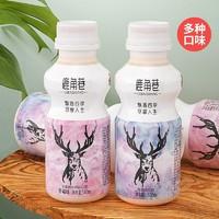 鹿角巷 乳酸菌饮品 340ml*12瓶