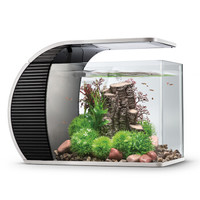 奇溢自然 玻璃鱼缸 水草活体造景小型鱼缸  KI-01