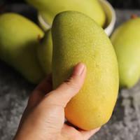 海南金煌芒果,單果300g+  凈重5斤裝