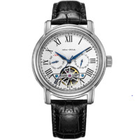 SEA-GULL 海鸥表 D819.622 男士自动机械手表