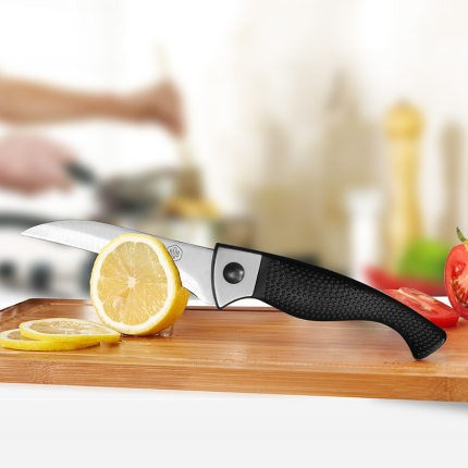博堡 602YY-008 钼钒钢水果刀