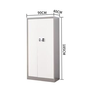 麦森(maisen)文件柜 办公钢制铁皮保密柜资料档案储物国保电子大门柜 灰套白色 加厚款 MS-TPG-110