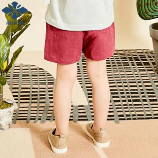自营童装儿童裤子男女童短裤下装小孩子休闲2019夏季新款外出服
