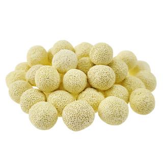 派乐特 鱼缸过滤材料细菌屋滤材生化球硝化细菌培菌球过滤材料 培菌球500g