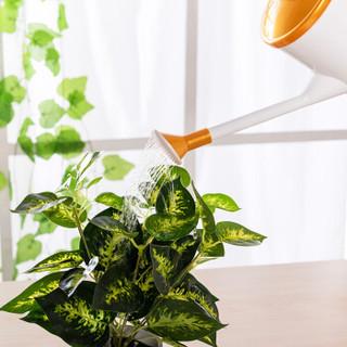 漫生活 浇水壶 洒水壶 手提式喷水壶盆栽植物浇花壶 园艺浇水工具 两用金色1.5L