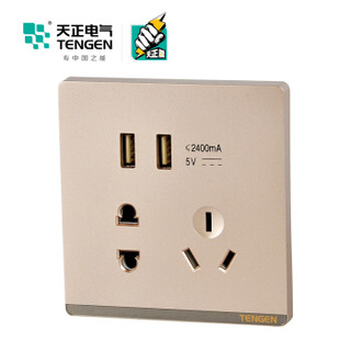 天正电气(TENGEN)TS 插座类 二位USB带单相二三极插座 家用五孔带USB插座面板 金色 面板开关