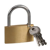 赛拓(SANTO)铜挂锁 水电表箱 抽屉锁 旅行箱包锁 支持订制通开钥匙款 50mm×12把0055-1 可定制