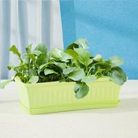 奥美优 阳台室内蔬菜种植盆 加厚塑料长方形花盆 家庭种菜庭院养花盆 带托盘 LZ7312 绿色