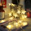 柯丽影 LED灯小彩灯 满天星闪灯婚庆生日聚会节日表白串灯挂墙装饰灯 暖白色星星灯3米20灯电池款