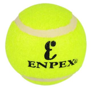 ENPEX乐士三只装网球 业余娱乐练习款