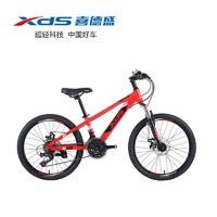 XDS 喜德盛 中国风儿童自行车 22寸