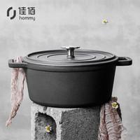佳佰 铸铁汤锅 炖煮锅 珐琅锅搪瓷锅 直火电磁炉通用 双耳圆形25cm-高级磨砂灰