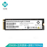 佰微(BIWINTECH)256G SSD固态硬盘 M.2接口(NVMe协议) WooKong系列