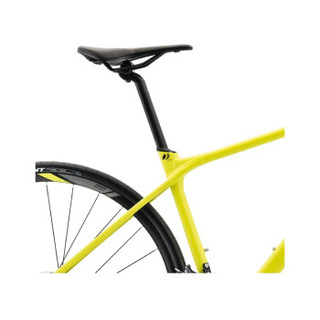 GIANT 捷安特 Fastroad SL 2 自行车