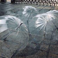 雨燕 16骨加固透明雨伞