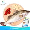 仙泉湖 三去白蕉海鲈/海鲈鱼 500g