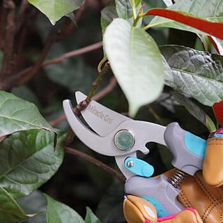 美乐棵 园艺工具 不锈钢圆形园艺剪 盆栽绿植修枝剪刀 修剪工具花剪修枝剪 蓝色