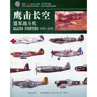 《鹰击长空:盟军战斗机》