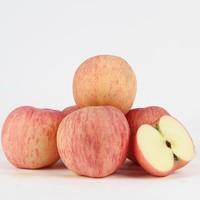 冰糖心苹果 80mm~85mm 10斤装