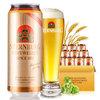 STERNBURG 斯汀伯格 小麦啤酒 500ml*24