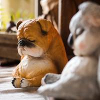掬涵 瞌睡萌宠树脂摆件 狗狗 考拉树懒甜蜜礼物情人节杂货花园