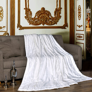 富安娜家纺 100%蚕丝夏被空调被芯 夏凉被子夏薄被芯双人加大 提花面料 致享 1米8/2米床适用(230*229cm)白色