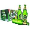 Chang/泰象 泰国原装进口 象啤 双象 泰国大象啤酒  320ml*24瓶 整箱