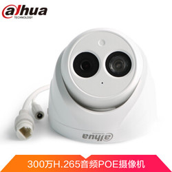 Dahua 大华 300万像素带POE供电 监控摄像头