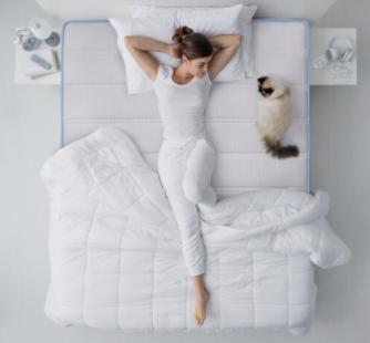 CatzZ 瞌睡猫 防螨弹簧床垫 蓝净灵C3 椰棕款 150*200cm
