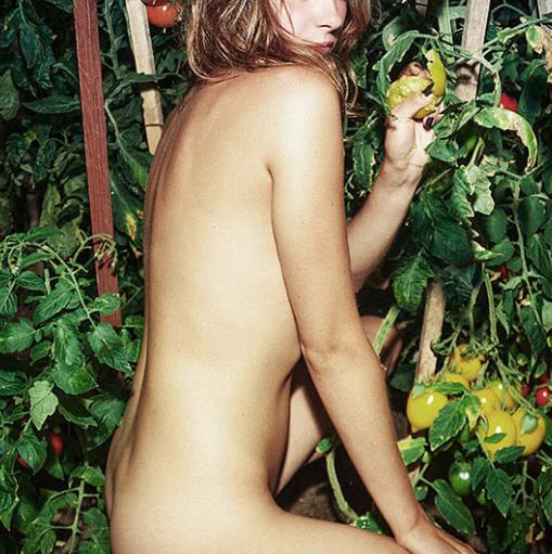 艺术品 Linas Vaitonis 作品《番茄》Tomatoes