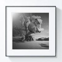 艺术品:PICA Photo 拾相记 波兰艺术家托马什·扎切纽克摄影《考拉岛》33 x 33 无酸装裱 50版