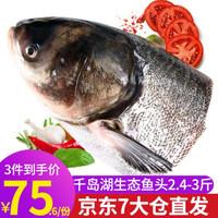 千岛湖鱼头鳙鱼头胖头鱼鱼头鲢鱼头剁椒鱼头鱼头泡饼食材煲汤大鱼头 (净膛后)2.4斤-3斤鲢鱼头