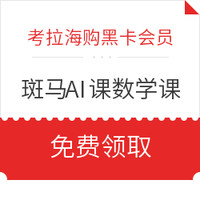 斑马AI课 数学课礼包(10节AI互动课+12件教具+14天专业辅导)